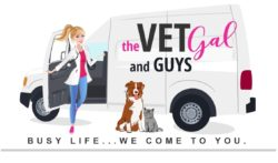 The Vet Gal and Guys